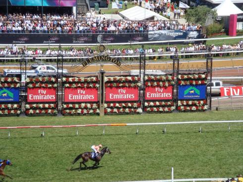 Black Caviar at Emirates Stakes Day 2011