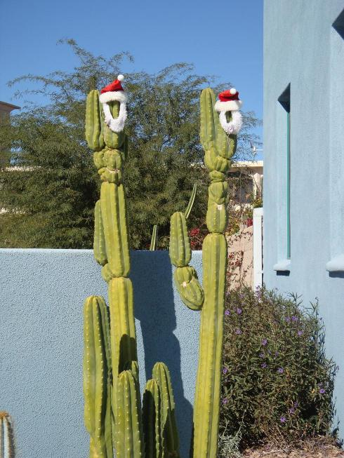 Christmas Spirit in the Desert