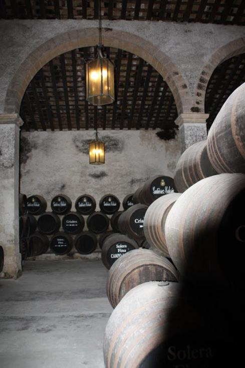 Visiting the cellar in Gutierrez-Colosia