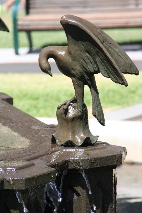 Bird on a Fountain