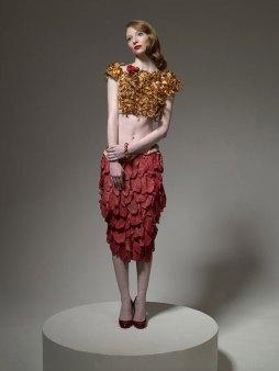 Food-Fashion-meat-dress