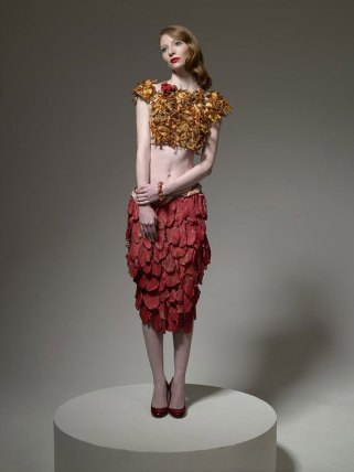 Food-Fashion-meat-dress