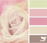 Palest Rose Palette